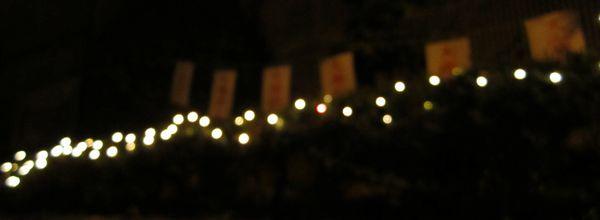 アワナル 阿波鳴 イルミネーション クリスマス